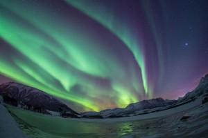 Ölmeden önce görmek istiyorum. Fotoğraf: Paul Goldstein/Exodus/Rex